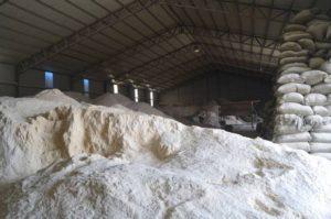 onggok starch powder